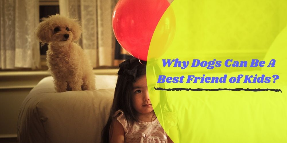 Why Dogs Can Be A Best Friend of Kids